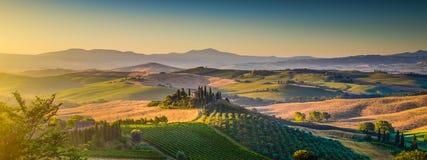 Panorama del paesaggio della Toscana ad alba, d'Orcia di Val, Italia Fotografia Stock Libera da Diritti