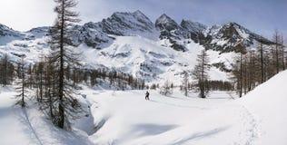 Panorama del paesaggio delle montagne di inverno Fotografie Stock