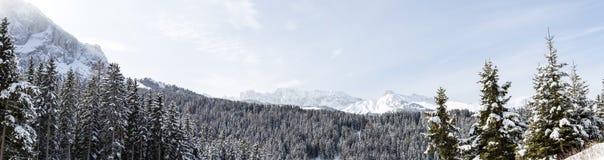 Panorama del paesaggio di inverno Fotografie Stock