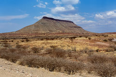 Panorama del paesaggio fantrastic della Namibia Immagini Stock
