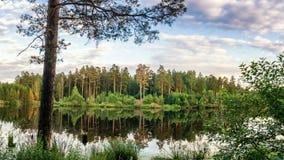 Panorama del paisaje del bosque con el bosque, el río y la costa rocosa, Rusia, Ural, agosto Fotos de archivo libres de regalías