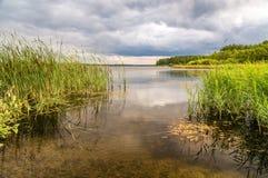 Panorama del paisaje del bosque con el bosque, el río y la costa rocosa, Rusia, Ural, agosto Imagenes de archivo