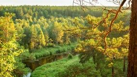 Panorama del paisaje del bosque con el bosque, el río y la costa rocosa, Rusia, Ural, agosto Fotografía de archivo libre de regalías