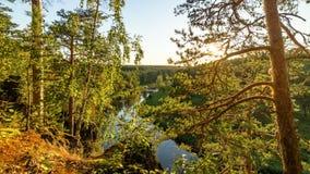 Panorama del paisaje del bosque con el bosque, el río y la costa rocosa, Rusia, Ural, agosto Fotos de archivo