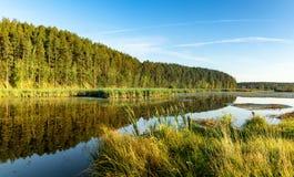 Panorama del paisaje del bosque con el bosque, el río y la costa rocosa, Rusia, Ural, agosto Imágenes de archivo libres de regalías