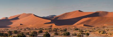 Panorama del paisaje de la duna en Sossusvlei Imágenes de archivo libres de regalías