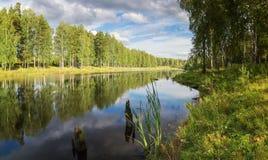 Panorama del paisaje de la tarde del verano en el lago Ural con los abedules en la orilla, Rusia, fotografía de archivo libre de regalías