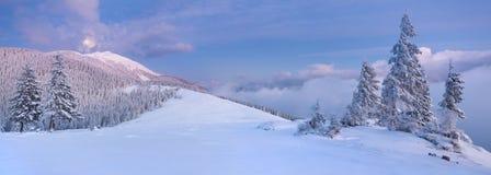Panorama del paisaje del invierno Imagenes de archivo