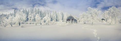 Panorama del paisaje del invierno en el pueblo de montaña Foto de archivo