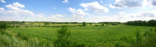 Panorama del paisaje del verano Imagen de archivo libre de regalías