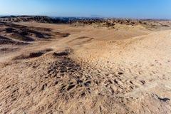 Panorama del paisaje fantrastic del moonscape de Namibia Fotos de archivo