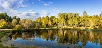 Panorama del paisaje hermoso del otoño con el lago y el bosque en el banco de Rusia, los Urales Fotos de archivo