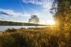 Panorama del paisaje hermoso del otoño con el lago y el bosque en el banco de Rusia, los Urales Imagen de archivo