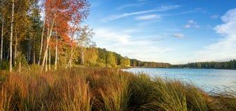 Panorama del paisaje hermoso del otoño con el lago y el bosque en el banco de Rusia, los Urales Imágenes de archivo libres de regalías