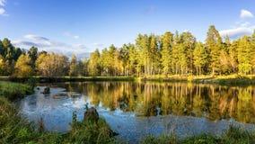 Panorama del paisaje hermoso del otoño con el lago y el bosque en el banco de Rusia, los Urales Imagen de archivo libre de regalías