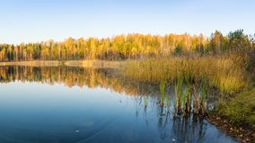 Panorama del paisaje hermoso del otoño en el lago, Rusia, Ural, Foto de archivo libre de regalías