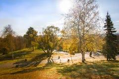 Panorama del parco di autunno Fotografia Stock Libera da Diritti
