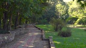 Panorama del parque almacen de metraje de vídeo