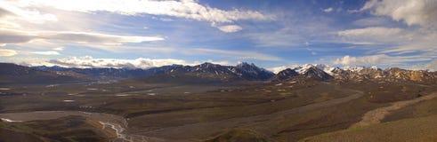 Panorama del parque de Denali Imagen de archivo libre de regalías
