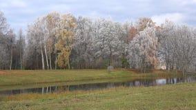 Panorama del parque de Trigorskoe, montañas de Pushkin de la helada del otoño, Rusia almacen de video