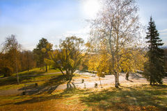 Panorama del parque del otoño Foto de archivo libre de regalías