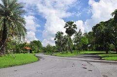 Panorama del parque grande de la ciudad Foto de archivo