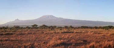 Panorama del parque nacional de Amboseli con el monte Kilimanjaro imagen de archivo