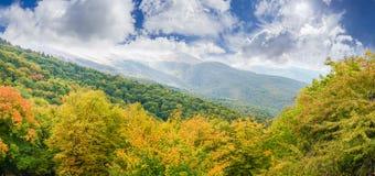 Panorama del pendio di collina con la foresta su una priorità alta Fotografie Stock
