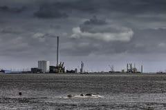 Panorama del porto con le guarnizioni, Danimarca dell'olio di Esbjerg Immagine Stock