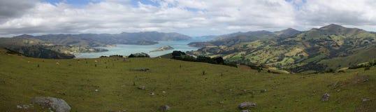 Panorama del porto di Akaroa, Nuova Zelanda Immagine Stock Libera da Diritti