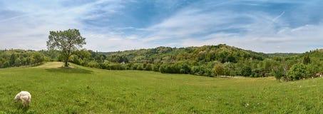 Panorama del pueblo de Ciglenica cerca de Kutina en d?a soleado de la primavera foto de archivo