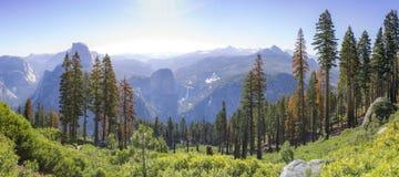 Panorama del punto del ghiacciaio con le viste di mezzi cupola e Yosemite Falls Fotografia Stock