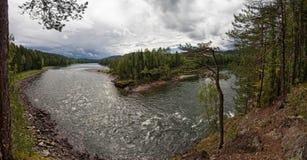 Panorama del río del taiga Imagenes de archivo