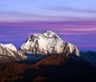 Panorama del supporto Dhaulagiri nel Nepal Himalaya Fotografie Stock Libere da Diritti