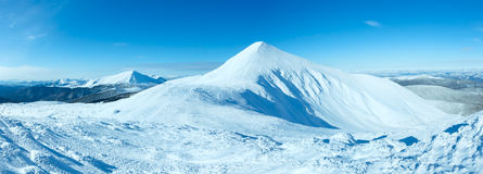 Panorama del supporto di Goverla di inverno (carpatico, Ucraina). fotografia stock