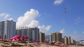 Panorama del sur 4k los E.E.U.U. del hotel de la playa de Miami del día de verano de la Florida metrajes