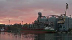 Panorama del terminal grande del grano en el puerto por la tarde Transbordo a granel de los cereales al buque en la noche Grano d metrajes