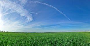 Panorama del terreno coltivabile Fotografie Stock