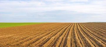 Panorama del terreno coltivabile - campo marrone Immagini Stock Libere da Diritti