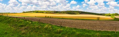 Panorama del terreno coltivabile dello Iowa Immagini Stock Libere da Diritti