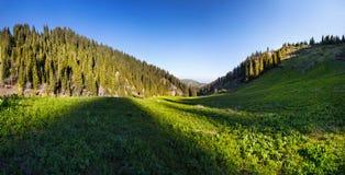 Panorama del valle de la montaña fotos de archivo libres de regalías