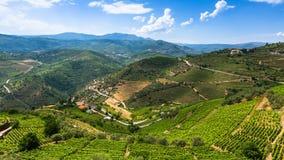 Panorama del valle del Duero, Portugal Fotografía de archivo libre de regalías