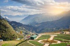 Panorama del Vietnam della valle di sapa di bella vista nell'alba di mattina con la nuvola di bellezza fotografia stock libera da diritti