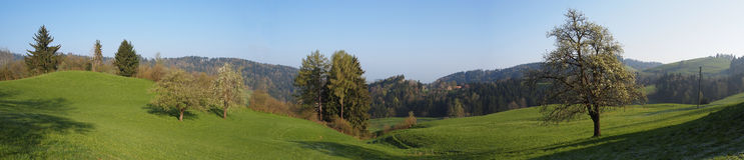 Panorama del villaggio Appenzell Svizzera dell'azienda agricola fotografia stock libera da diritti