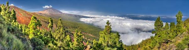 Panorama del volcán Teide y del valle de Orotava - visión desde el La Crucita - Tenerife de Mirador Imagen de archivo