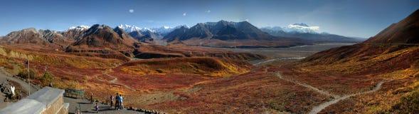 Panorama dell'Alaska Mt McKinley in autunno fotografia stock libera da diritti