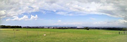Panorama dell'allevamento di pecore, Sapporo Immagine Stock