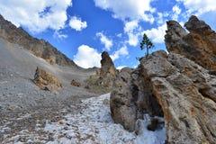 Panorama dell'alta montagna nelle alpi di Piemonte con l'albero solo fra le rocce Immagini Stock Libere da Diritti