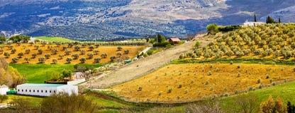 Panorama della campagna dell'Andalusia Fotografie Stock Libere da Diritti