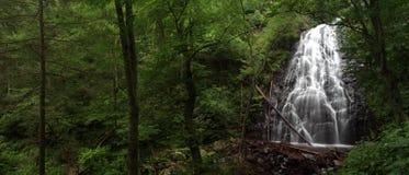 Panorama della cascata Immagine Stock